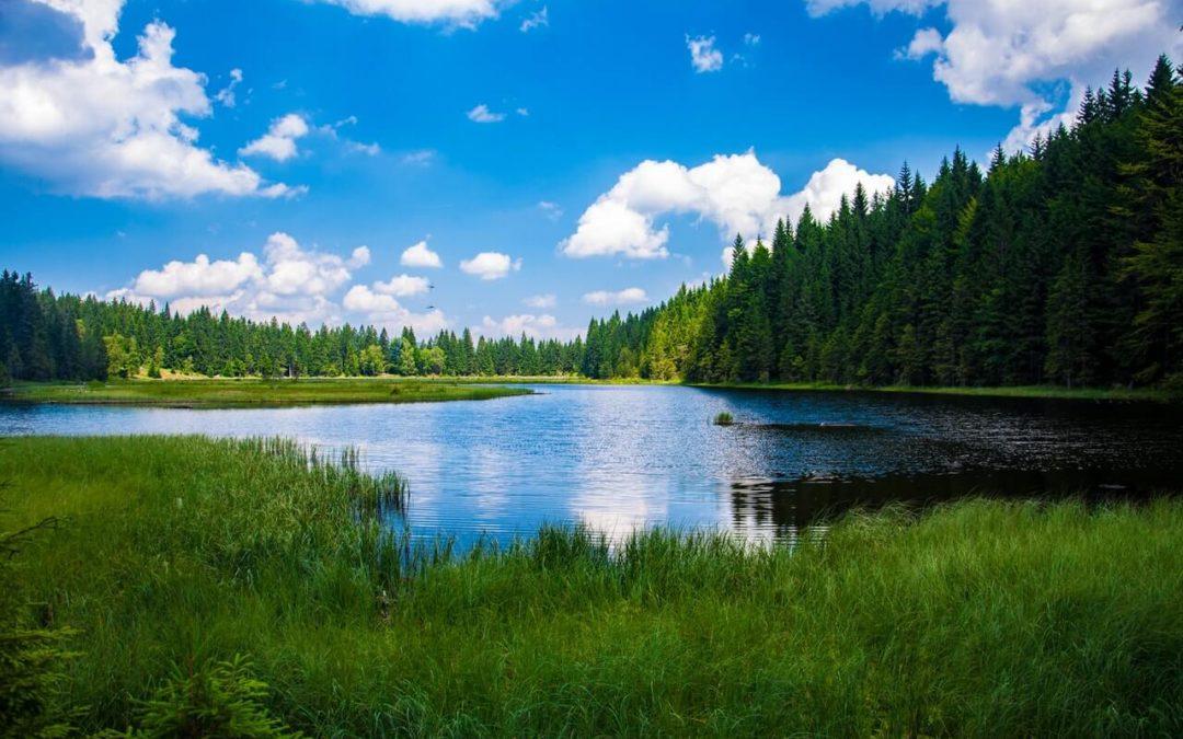 Nieruchomość rolna – definicja wg KC. Co to jest i kto może ją nabyć?